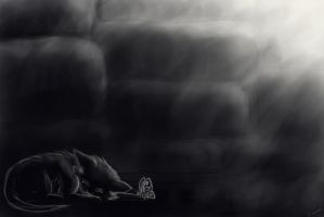 Kitten in the well I by Sirmaril