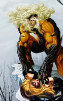 Sabretooth vs Warbird aka Ms. Marvel by tintallin