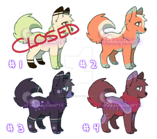 Canine Adopts Auction - 3 (3/4 OPEN) by xDreamyDesigns