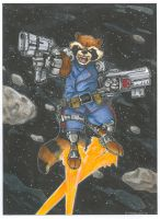 Rocket Raccoon by DKHindelang