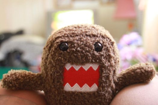I GOT YOU DOMO by SumDRYJIN