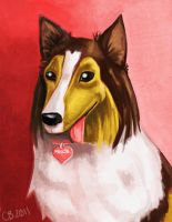 Maggie my Mom's dog by sketchdoll