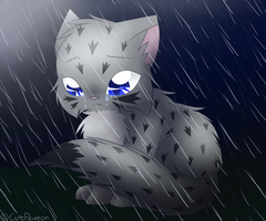 Ashfur in the Rain by CuteFlare