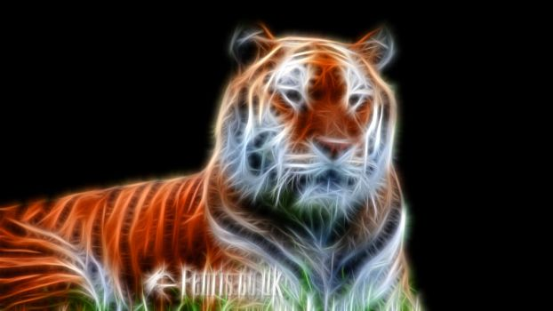 Fractal Tiger #01 by FenrisOswin