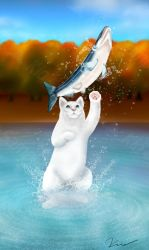 Cat Salmon Battle by maotan