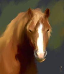Portrait of Horse by RHADS