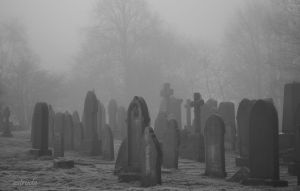 Frost And Fog In The Cemetery by Estruda