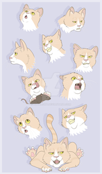 Minchio expression sheet by AltairSky
