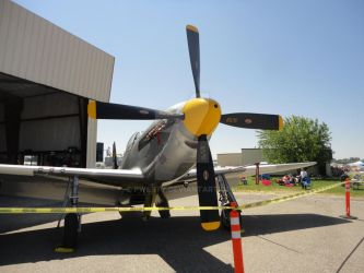 P-51-D4 by Pwesty