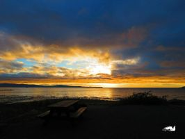 Sunset Bench At Beach by wolfwings1