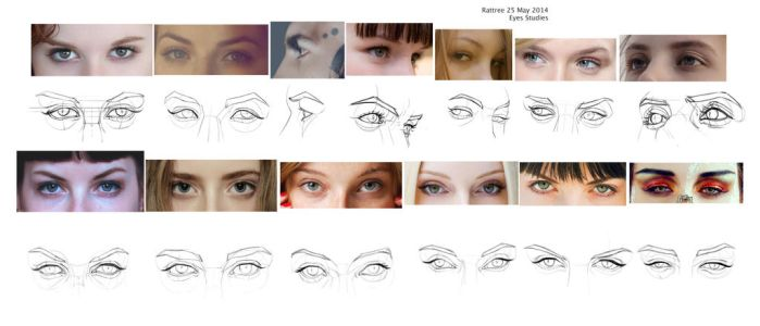 Comp of Eye Studies by rattree