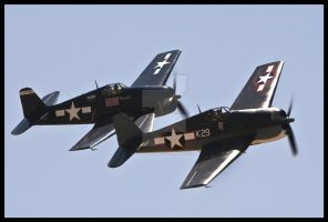 Planes of Fame 16 by AirshowDave