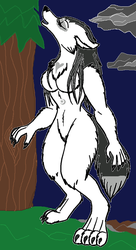 Diana Marie the Wolf Girl by SassyDragon18