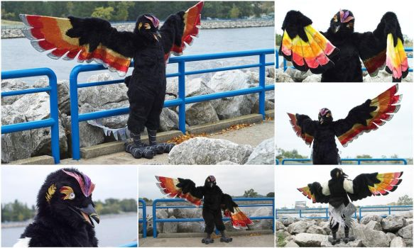 Fire Phoenix Fursuit - Modified (2016) by Eternalskyy