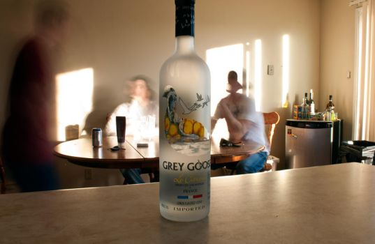 Grey goose by Shano11
