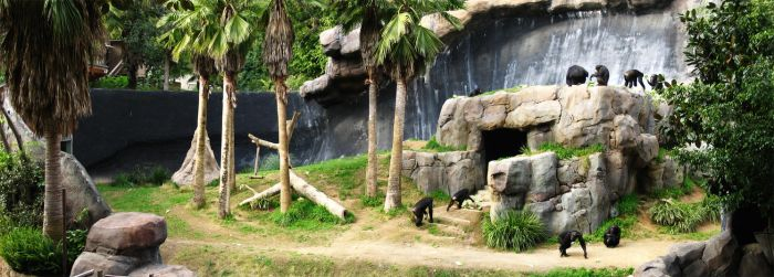 Los Angeles Zoo by eRality