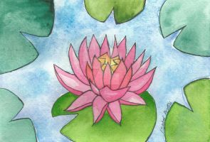 Water Lily by Isabelproffitart