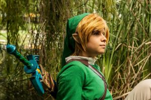 Link by LiDwyre
