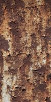 Photo Texture Of Metal Rusted Paint by environment-textures