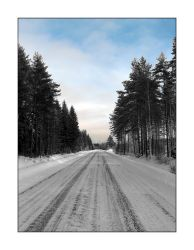 A road perspective by dileno