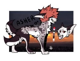 Asher reference sheet - COM by kinkyytheclown
