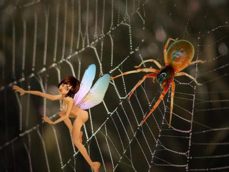 Caught in the web by DianaForDinner