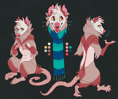 Custom character design for SunnyDust by frirro