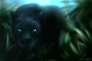 Black Panther by LiussSteen