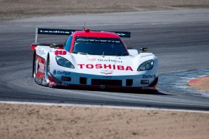 SunTrust Racing Corvette by SharkHarrington