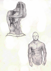 Male anatomy study by Stalfrost
