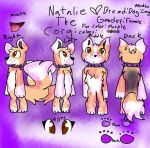 Ref sheet fanial Natalie the corgi by NataliePuppy12