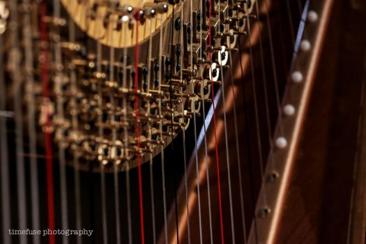 Harp to tune by TimeFuse