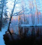 Spring is coming .. by KariLiimatainen