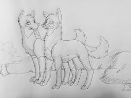 Two Maned Wolves by Alpha--She--Wolf