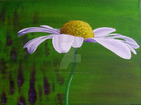 Daisy Canvas by bicyclegasoline