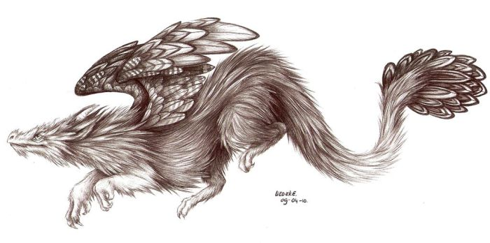 furry flying dragon by Liedeke