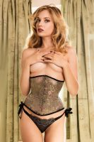 Amy Wilder Corset II by wbmstr
