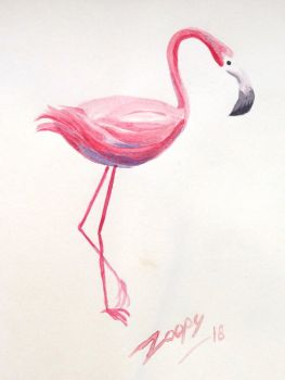 [Practice] Flamingo by l-Zoopy-l