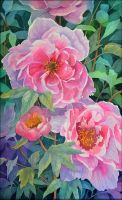 Peonies 2 by Shelter85