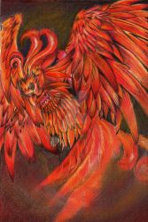 Harry Potter: pheonix by pearsmallsky