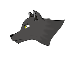 Wolf by D1st0rtedFate