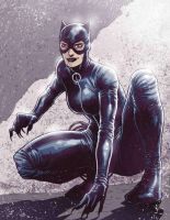 Catwoman1 by Fuacka