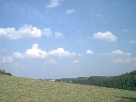 landscape09-08-02 by abfall