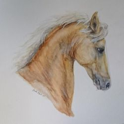 Palomino horse in hard watercolors by QueenAnneka