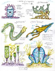 Forgotten Biosphere 1 - Giant one-celled organisms by MickMcDee