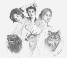 My Kind of Marauders by PirateCaptainJess