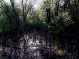 Dark Places 012 by Ecathe