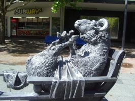 Sheep in Canberra by GlitterQueen