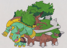 Turtwig, Grotle and Torterra by GeneralFluffles