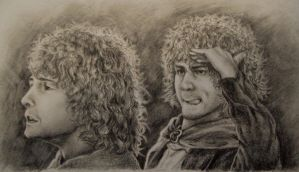Merry and Pippin by SistaRival